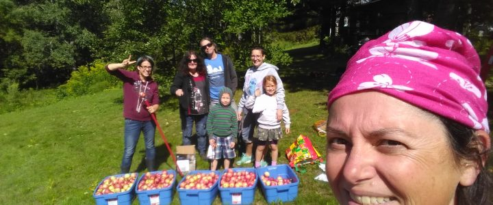 Belle réussite du projet Des Chenaux récolte visant à réduire le gaspillage alimentaire et soutenir sa communauté
