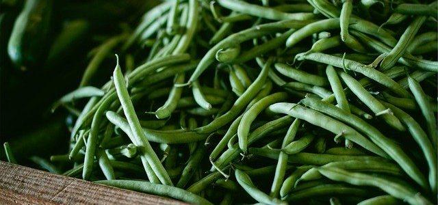 Haricots/fèves (Verts ou jaunes)